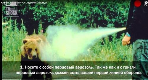 Контроль-АС 225 мл антимедвежий