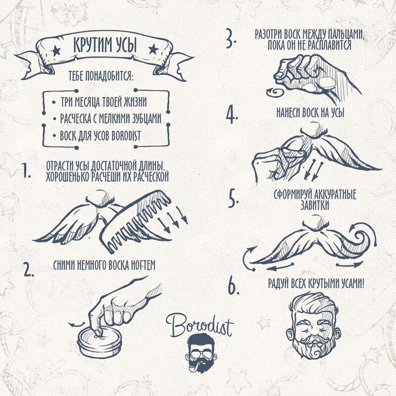 инструкция по применению продукта бородист для укладки