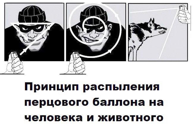 применение баллончика антидог
