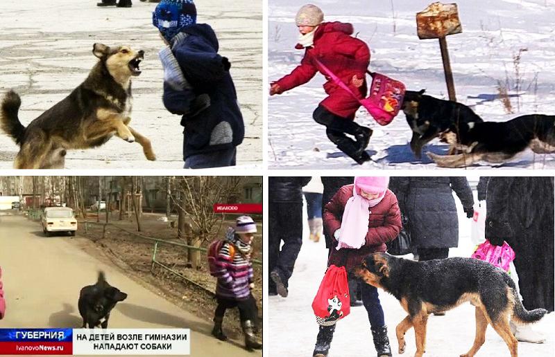 детям для защиты от собак