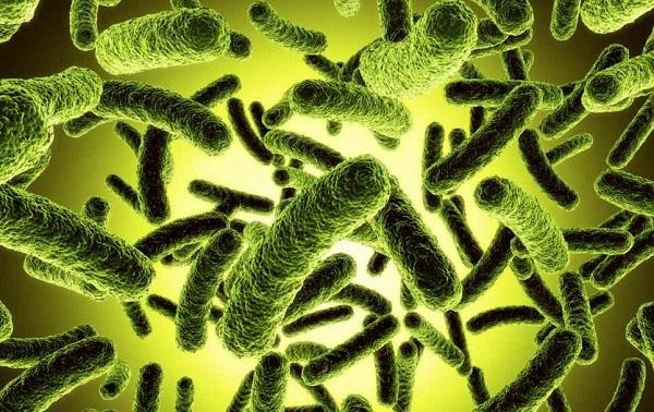 злые бактерии