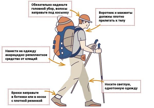 защита от клещей с помощью одежды