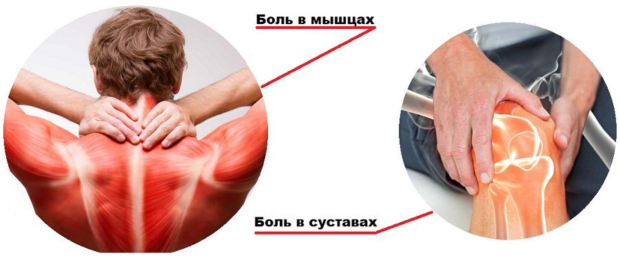 устраняет боль в мышцах и суставах