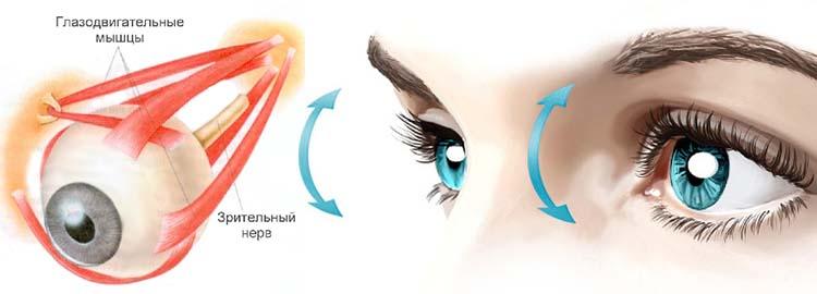 напряжение глазодвигательных мышц