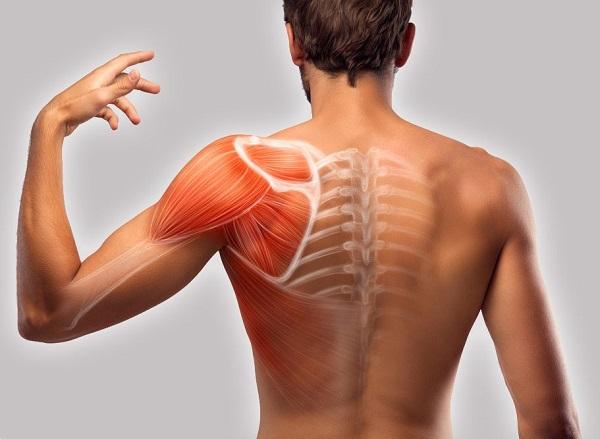 бальзам для мышц
