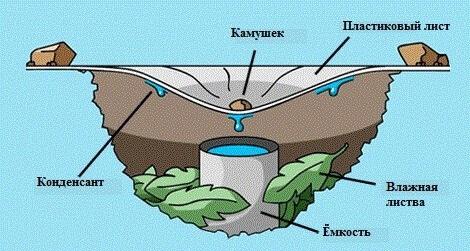 где взять воду при конце света?